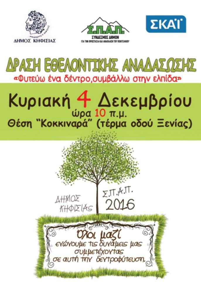 anadasosi_kikkinaras-01